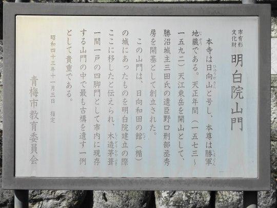 0694-03.jpg