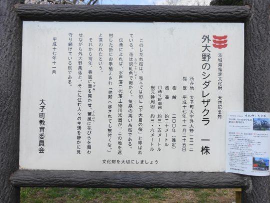 1103-02.jpg