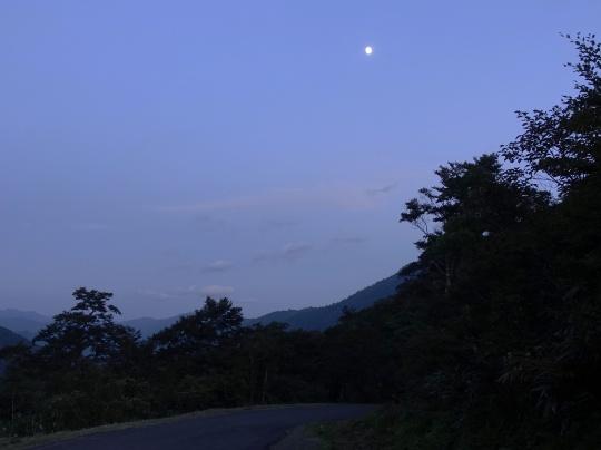 1252-07.jpg
